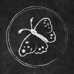 Free Chalkboard Instagram Story Highlight Covers - Butterfly