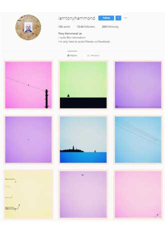 Instagram Colorful Color Palette Example2