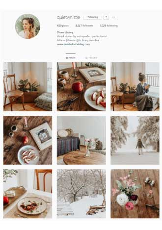 Instagram Earthy Color Palette Example1