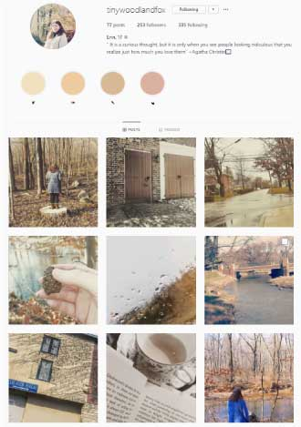 Instagram Neutral Color Palette Example1