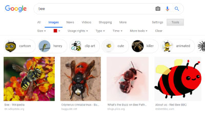 Search Images by Color