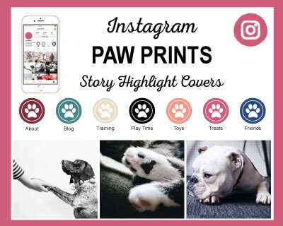 Paw Prints Instagram Story Highlight Icons
