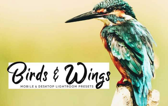 Birds and Wings: Pet Photography Presets