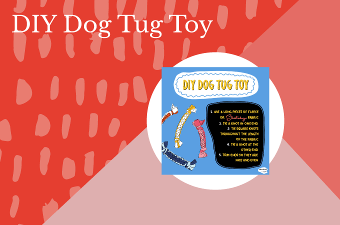 DIY Dog Tug Toy