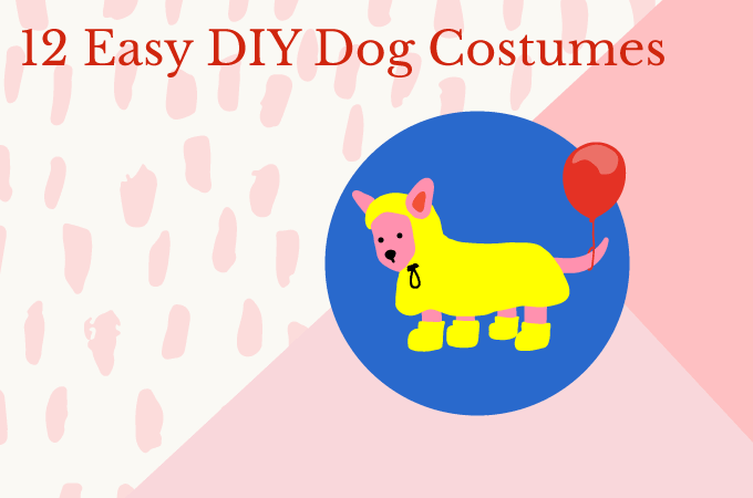 12 Easy DIY Dog Costumes