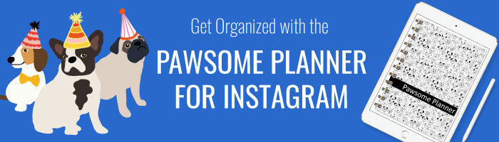 Pawsome Digital Planner For Instagram