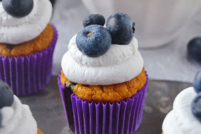 Sweet Potato Blueberry pupcakes