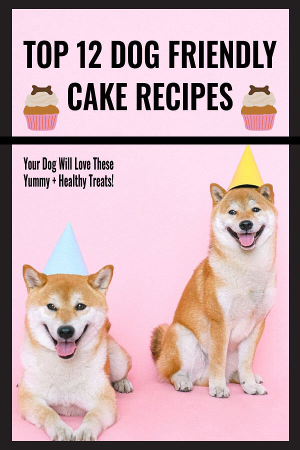 Top 12 Dog Friendly Cake Recipes