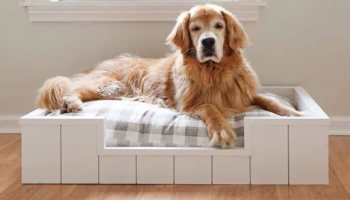 Dog Bed with Shiplap