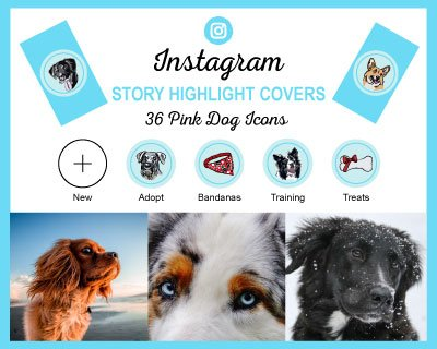 Blue Dog Breed Instagram Highlight Covers