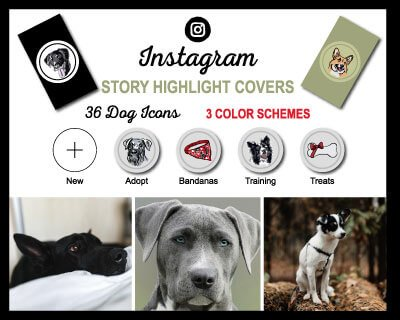 Dog Breed Instagram Highlight Covers