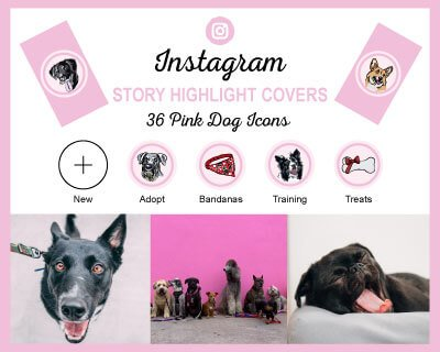 Pink Dog Breed Instagram Highlight Covers